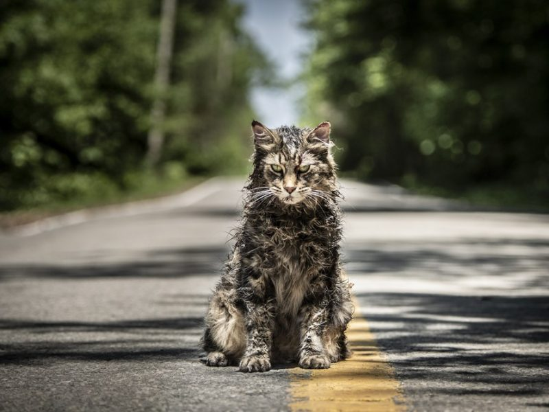 """Pet Sematary"" (2019) Review"